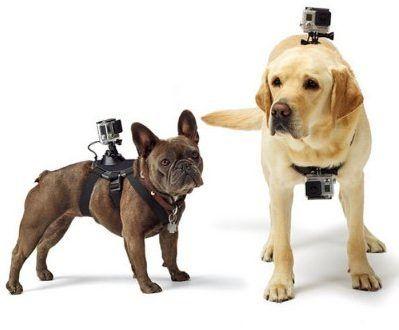 accesorios originales para cámaras deportivas